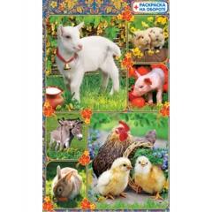 Наклейки А6,Домашние животные, Полипринт